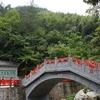 Nine Dragons Bridge