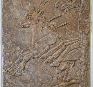 Nineveh Inscriptions - Mosul - Ninawa Governorate - Iraq