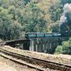 NMR Train On Viaduct