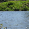 North Branch Kishwaukee River