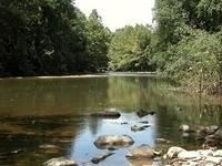 North Branch Patapsco Río