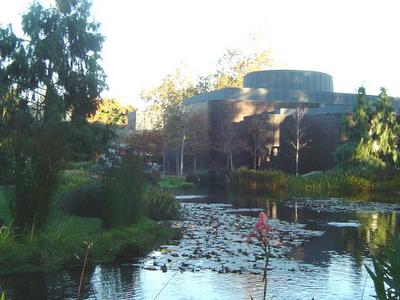 Norton Simon Museum