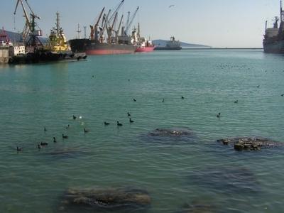 Nov  Port