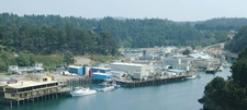 Noyo Harbor From Above