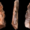 Lithic Core: Museum Of Toulouse