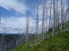 Numa Lookout Trail - Glacier - Montana - USA
