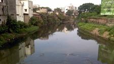 Nag River Reflecting Urban Pollution
