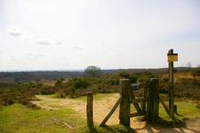 Nationaal Park Veluwezoom Near Posbank