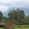 Grounds Of Mbale Pentecostal Theological College
