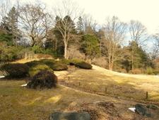 Nikko Botanical Garden In Winter