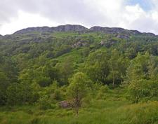 Steep Wooded Slopes Of Glen Croe