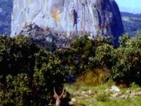 Nyanga National Park