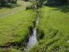 Oakeys Brook