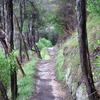 Oak Flat Trail 123 - Tonto National Forest - Arizona - USA