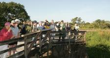 Observation Platform On Eco Pond Trail