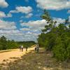 Ocala Adventure Trail
