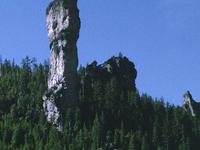 Ochoco Floresta Nacional