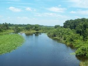 Ocklawaha Río