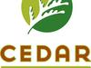 Official Logo Of Cedar Park Texas