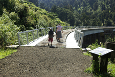 Ohakune Old Coach Road - Tongariro National Park - New Zealand