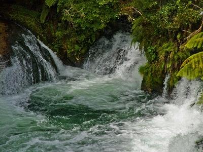 Okere Falls - Bay Of Plenty - North Island NZ