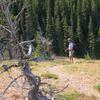Oldman Lake Trail - Glacier - Montana - USA