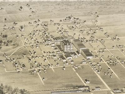 Old Map   Mc Kinney   1 8 7 6