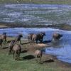 Ol Donyo Sabuk National Park