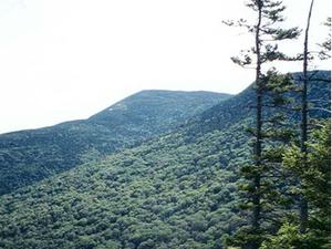 Montaña Antiguo Speck