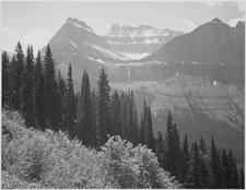Ole Creek Trail - Glacier - Montana - USA