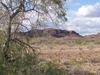 Desert Near Yuma