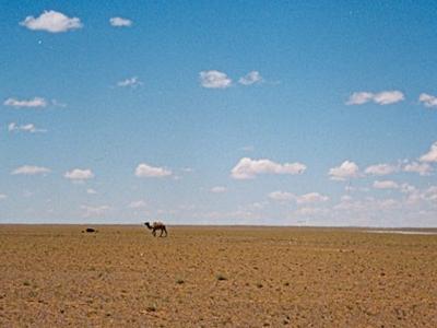 Omnogovi Landscape