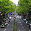 Omotesandō Street