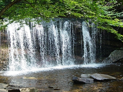 Oneida Falls Front View - Ricketts Glen PA