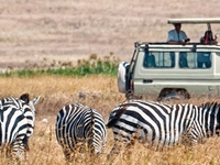 Private Epic Adventures in Northern Tanzania