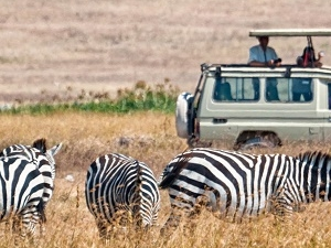 Private Epic Adventures in Northern Tanzania Photos