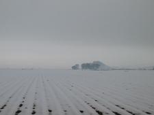 Ontario Snow Field
