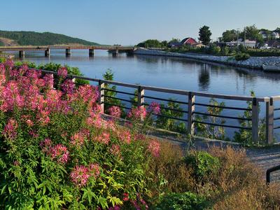 On The Saint John River