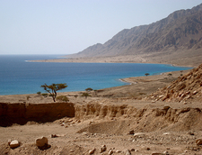 On Way To Colored Canyon - South Sinai