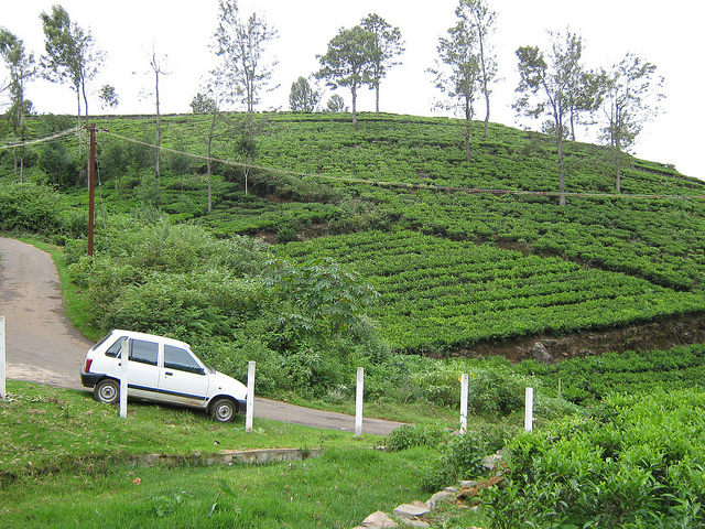 Ooty Package - Vechiles Service Photos