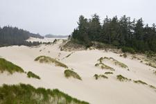 Oregon Dunes N R A