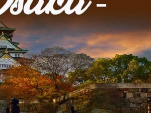 Osaka Free and Easy Tour Package
