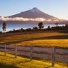 Oserno Volcano - Chile