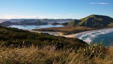 Otago Peninsula Landscape @ South Island NZ