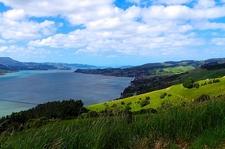 @ Otago Peninsula - South Island NZ