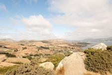 Otago Peninsula - South Island NZ