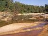 Ouiski Chitto Creek Louisiana