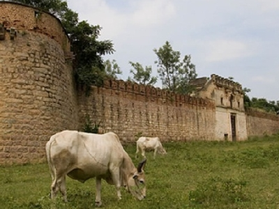 Outside The Fort