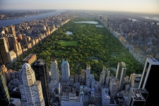 Overlooking NY Central Park