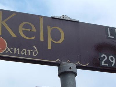 Oxnard  Street  Sign